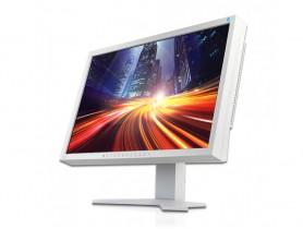 EIZO FlexScan S2202W Monitor - 1441356